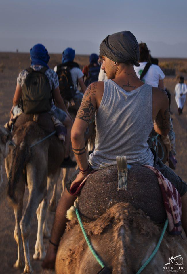 IMG 2904 tattoo op kameel 1 650x952 - Portret